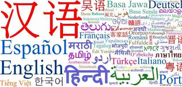 idioma mas importante