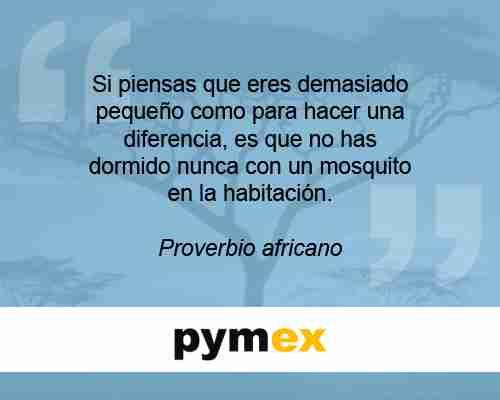 80 proverbio africano