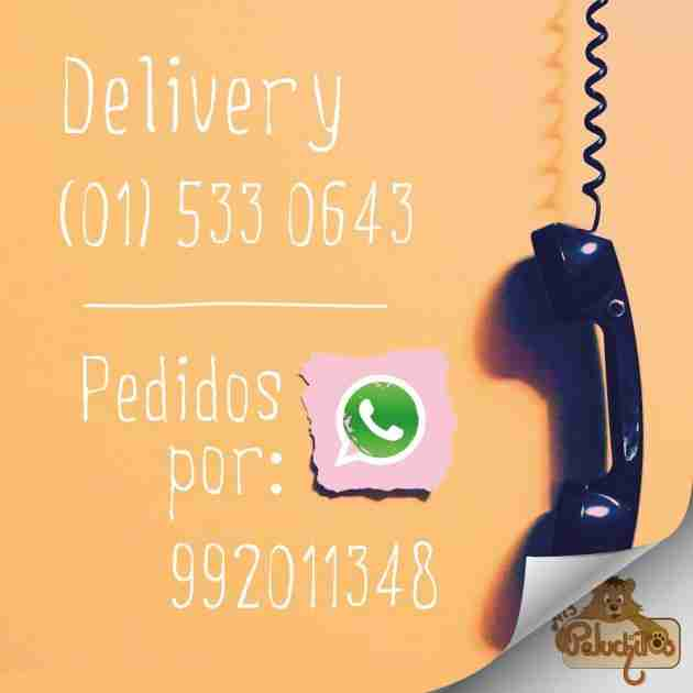 whatsapp_peluches