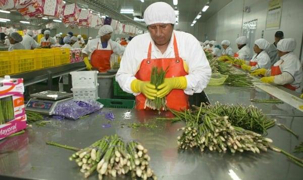 Estas son las 7 estrategias para duplicar las agroexportaciones peruanas